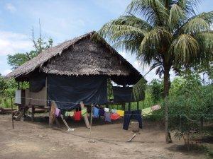 Maison en Forêt Amazonienne - Pérou